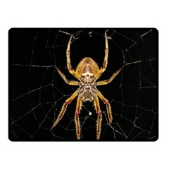 Insect Macro Spider Colombia Fleece Blanket (small)