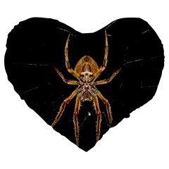 Insect Macro Spider Colombia Large 19  Premium Heart Shape Cushions
