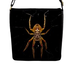 Insect Macro Spider Colombia Flap Messenger Bag (l)