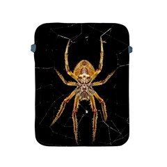 Insect Macro Spider Colombia Apple Ipad 2/3/4 Protective Soft Cases