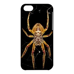 Insect Macro Spider Colombia Apple Iphone 5c Hardshell Case