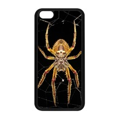 Insect Macro Spider Colombia Apple Iphone 5c Seamless Case (black)