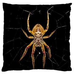 Insect Macro Spider Colombia Standard Flano Cushion Case (two Sides)