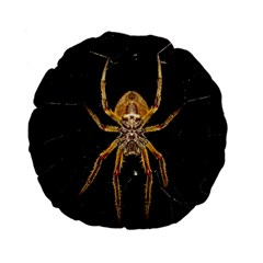Insect Macro Spider Colombia Standard 15  Premium Flano Round Cushions