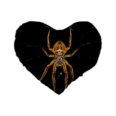 Insect Macro Spider Colombia Standard 16  Premium Flano Heart Shape Cushions