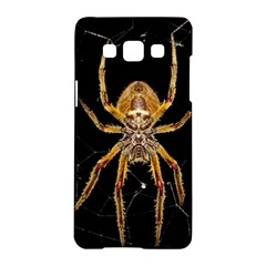 Insect Macro Spider Colombia Samsung Galaxy A5 Hardshell Case