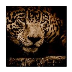 Jaguar Water Stalking Eyes Tile Coasters
