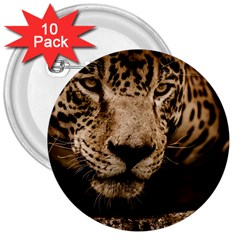 Jaguar Water Stalking Eyes 3  Buttons (10 Pack)
