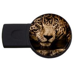 Jaguar Water Stalking Eyes Usb Flash Drive Round (2 Gb)