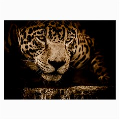 Jaguar Water Stalking Eyes Large Glasses Cloth
