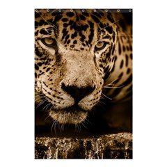 Jaguar Water Stalking Eyes Shower Curtain 48  X 72  (small)