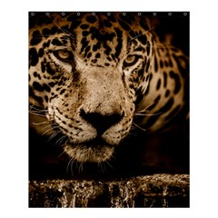 Jaguar Water Stalking Eyes Shower Curtain 60  X 72  (medium)