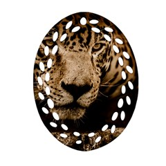 Jaguar Water Stalking Eyes Oval Filigree Ornament (two Sides)