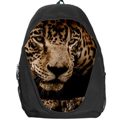 Jaguar Water Stalking Eyes Backpack Bag