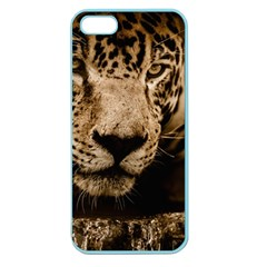 Jaguar Water Stalking Eyes Apple Seamless Iphone 5 Case (color)
