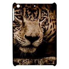 Jaguar Water Stalking Eyes Apple Ipad Mini Hardshell Case
