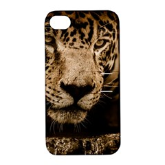 Jaguar Water Stalking Eyes Apple Iphone 4/4s Hardshell Case With Stand