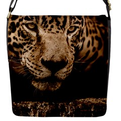 Jaguar Water Stalking Eyes Flap Messenger Bag (s)