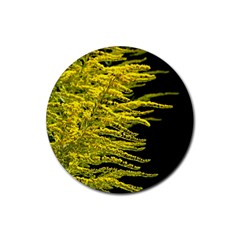 Golden Rod Gold Diamond Rubber Coaster (round)