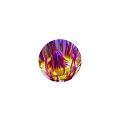 Flower Blossom Bloom Nature 1  Mini Buttons