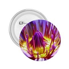 Flower Blossom Bloom Nature 2 25  Buttons
