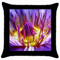 Flower Blossom Bloom Nature Throw Pillow Case (black)