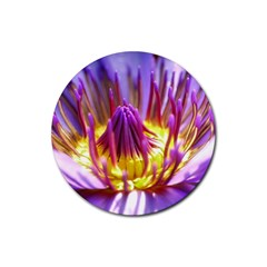 Flower Blossom Bloom Nature Rubber Round Coaster (4 Pack)