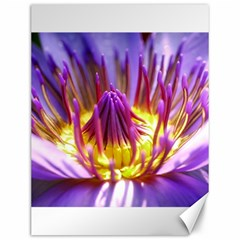 Flower Blossom Bloom Nature Canvas 12  X 16