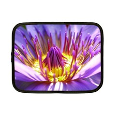 Flower Blossom Bloom Nature Netbook Case (small)