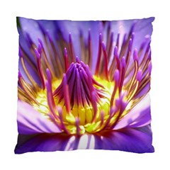 Flower Blossom Bloom Nature Standard Cushion Case (one Side)
