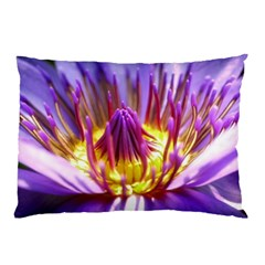 Flower Blossom Bloom Nature Pillow Case (two Sides)