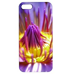 Flower Blossom Bloom Nature Apple Iphone 5 Hardshell Case With Stand