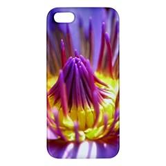 Flower Blossom Bloom Nature Iphone 5s/ Se Premium Hardshell Case