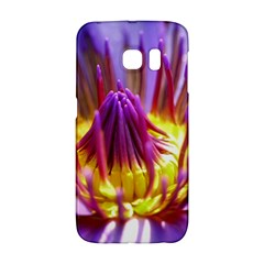 Flower Blossom Bloom Nature Galaxy S6 Edge