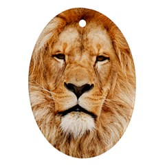 Africa African Animal Cat Close Up Ornament (oval)