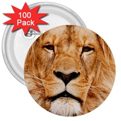 Africa African Animal Cat Close Up 3  Buttons (100 Pack)