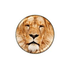 Africa African Animal Cat Close Up Hat Clip Ball Marker (4 Pack)