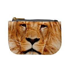 Africa African Animal Cat Close Up Mini Coin Purses