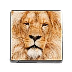 Africa African Animal Cat Close Up Memory Card Reader (square)