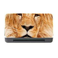Africa African Animal Cat Close Up Memory Card Reader With Cf