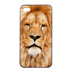 Africa African Animal Cat Close Up Apple Iphone 4/4s Seamless Case (black)