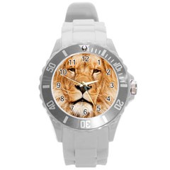 Africa African Animal Cat Close Up Round Plastic Sport Watch (l)