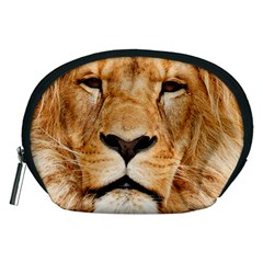 Africa African Animal Cat Close Up Accessory Pouches (medium)