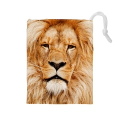 Africa African Animal Cat Close Up Drawstring Pouches (large)