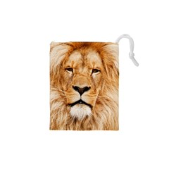 Africa African Animal Cat Close Up Drawstring Pouches (xs)