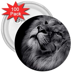 Feline Lion Tawny African Zoo 3  Buttons (100 Pack)