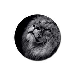 Feline Lion Tawny African Zoo Rubber Coaster (round)