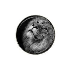 Feline Lion Tawny African Zoo Hat Clip Ball Marker (10 Pack)