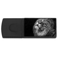 Feline Lion Tawny African Zoo Rectangular Usb Flash Drive