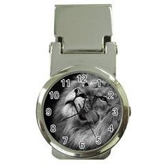 Feline Lion Tawny African Zoo Money Clip Watches